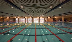immerse-yourself-in-olympic-swimming-glory-blog-1d