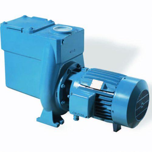 Calpeda Water Pump for Pools
