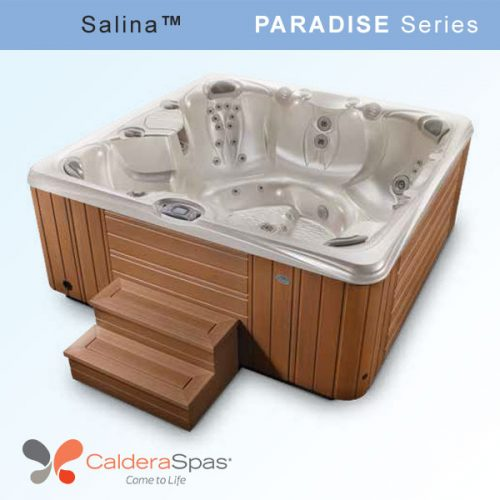 salina-hot-tub-from-caldera-spas-paradise-series-a